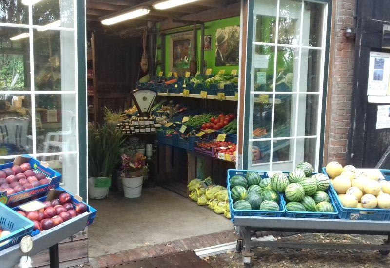 Hoogstrate Groenten en Fruit, Kloetinge